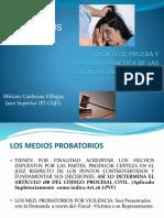 MEDIOS_DE_PRUEBA_Y_REALIDAD_PRACTICA (1).pptx