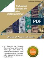 Induccion_Bienestar_Organizacional.pdf