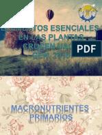 Elementos Esenciales en Las Plantas