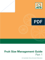 437034-Citrus Fruit-Size-Guide-PART-1.pdf