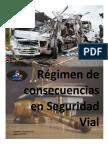 Regimen de Consecuencias en Seguridad Vial