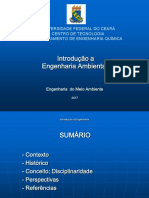 Introdução à Eng Meio Ambiente.pdf