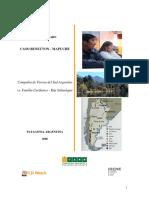 inf_mapuche_benetton_farn_es.pdf