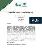 DESMONTAGEM E MONTAGEM de ROTORES de GRANDE PORTE. Letícia de Carvalho de Souza. Insight Energy Sergio Fagundes. Insight Energy