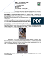 Pruebas de Campougc 160212002807