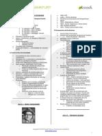 Filosofia Escola de Frankfurt v01