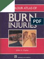 Colour Atlas of Burn Injuries-CHAPMAN & HALL MEDICAL.pdf