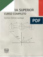 Carmen Gómez Laveaga - Álgebra Superior