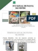 Fauna Exposicion