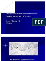 Melanocytes at the Basement Membrane Zone of Normal Skin.