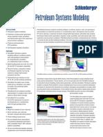 petromod_petroleum_systems_modeling_cores.pdf