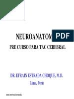 neuroanatomia para interpretrar tac.pdf