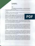 294645570-Teoria-traducerii.pdf