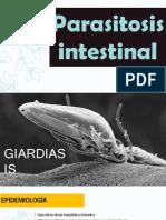 Parasitos gastro.pdf