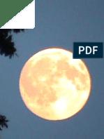 Esbat - Full Moon Power (May 2016)