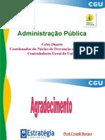 13-ADMINISTRAÇÃO PÚBLICA - CELSO DUARTE.pdf