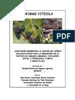 vinedo_upm_ur.pdf