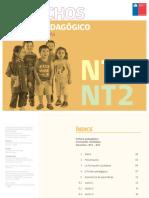 NT1-NT2.pdf