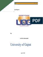 Internship Report on NBP