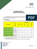 Informe Tecnico Junta de Dilatación