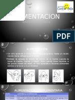 ALIMENTACIÓN  DE NIÑOS 3-5 AÑOS