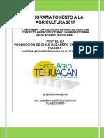 Extracción y Requerimiento de Fósforo en Chile Habanero (Capsicum Chinense Jacq.) _big Brother
