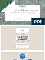 2 PROGRAMA DE SANEAMIENTO POES.pptx