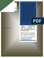SPINE. ConocerelConocimientoActual InformeFinaldelProyectodeInvestigacion2012 ENTREGADO