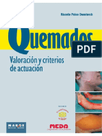 Quemados-Valoracion-y-criterios-de-actuacion-pdf.pdf