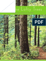 Save the Lofty Trees