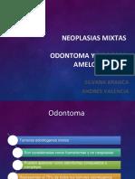 Neoplasias-mixtas-terminadas