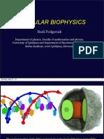 Molecular Biophysics (1)