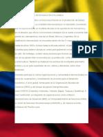 La Economia en Colombia Toro