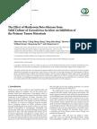 12. - Beta-glucans From g. Lucidum-Inhibition of the Primary Tumor Metastasis