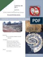 Informe Pampa de La Culebra 90