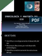 1. Embriología Del Ojo