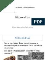 Clase Teorica 17_mitocondrias-Versión 3 - Parte 1