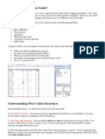 What is an Excel Pivot Table