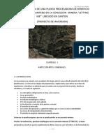 IMPLEMENTACION DE UNA PLANTA CONCENTRADORA PARA MINERAL AURIFERO TIPO FILONEANO EN LA CONCESION.docx