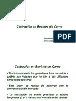 12_Castracion TESIS .pdf
