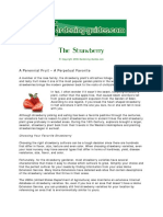Strawberries Growing and Selection Guide