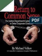 A Return to Common Sense by Michael Volkov