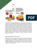 1. DIETA RICA EN FIBRA.pdf