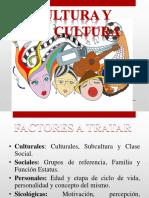 Cultura y subcultura
