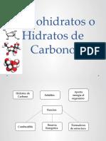 Carbohidratos o Hidratos de Carbono