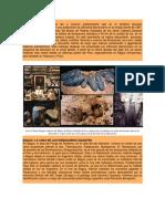 Fosiles en Perú_ Parte 2