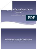 Plagas y enfermedades de los frutales.pptx