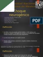 Choque neurogénico