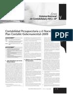 Contabilidad Presupuestaria y El Nuevo Plan Contable Gubernamental