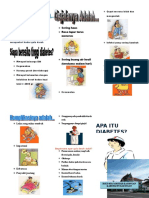 leaflet DM.doc